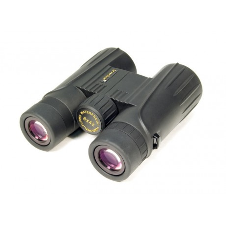 The BEST Compact Binoculars to Bring to Events!